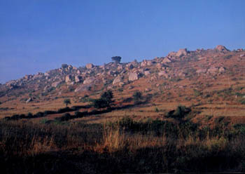 A view Of Turahalli